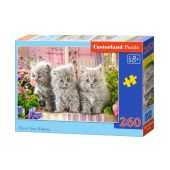 Castorland: Three Grey Kittens